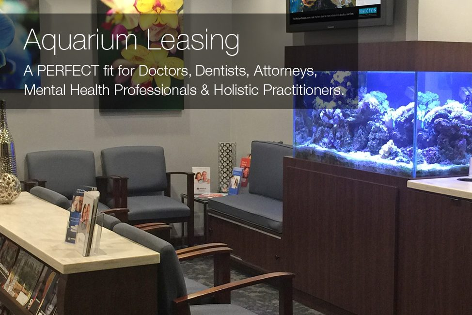 medical_dental_office_aquarium_leasing_Mobile-3_2
