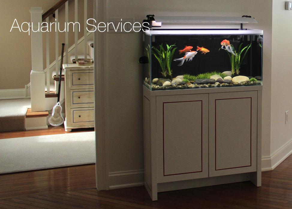 Maintenance – Current Aquatics | Aquariums & Ponds, in NJ